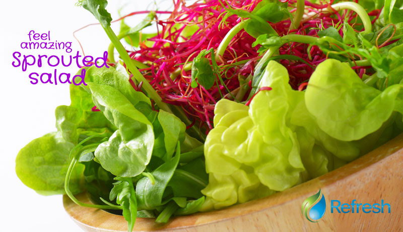 sproutedsalad