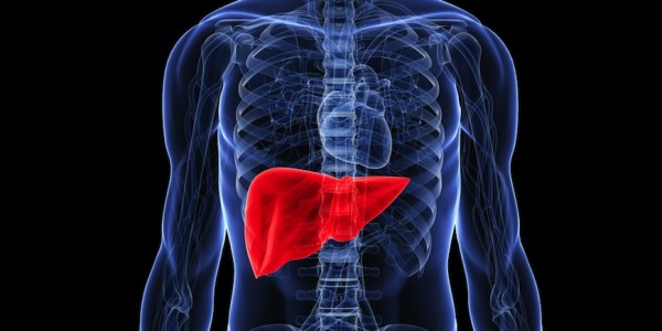 improve your liver function with these 7 easy steps! - refresh, Human Body